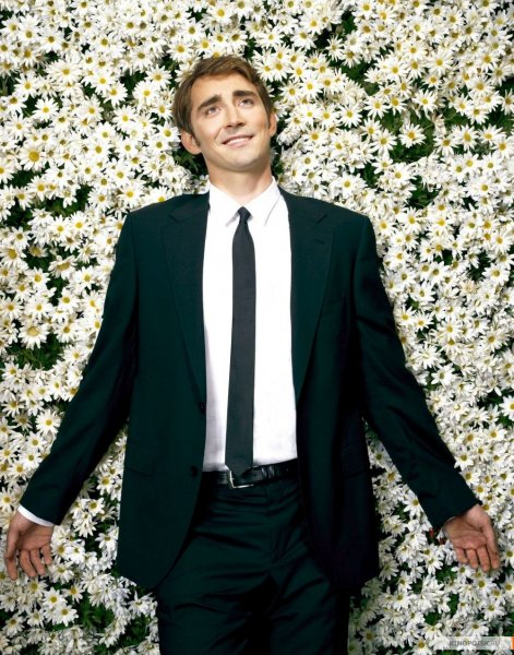 Pushing Daisies poster